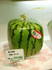 Square Watermelon!, by Flickr user solution_63, licensed via Creative Commons.