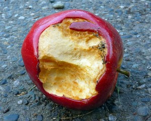 dirty rotten apple 1 by flickr user Lara604, licensed by Creative Commons