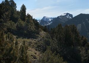 Mountains landscape 1